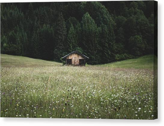 Alpine Symmetry Canvas Print