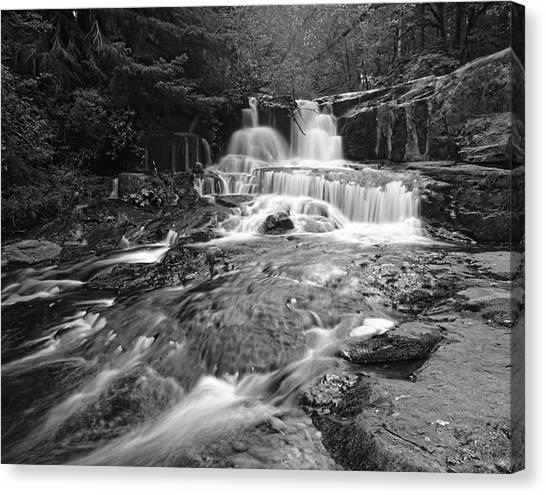 Alsea Falls Canvas Print