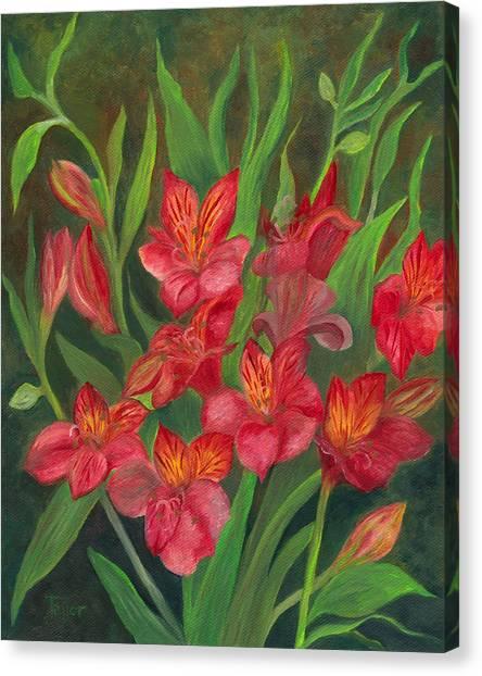 Alstroemeria Canvas Print