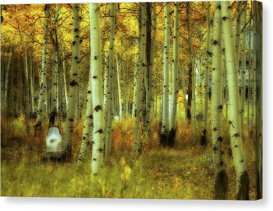 Alvarado Autumn 1 Canvas Print
