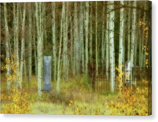 Alvarado Cemetery 41 Canvas Print
