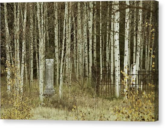 Alvarado Cemetery 42 Canvas Print
