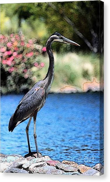 Always Looking To Eat Canvas Print