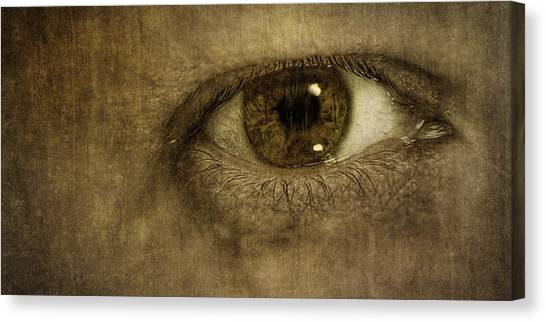 Irises Canvas Print - Always Watching by Scott Norris