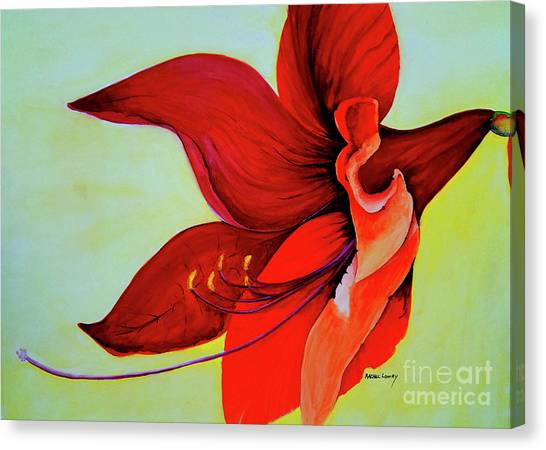 Amaryllis Blossom Canvas Print