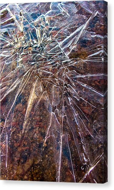 Amazement Canvas Print by Marian Kraus