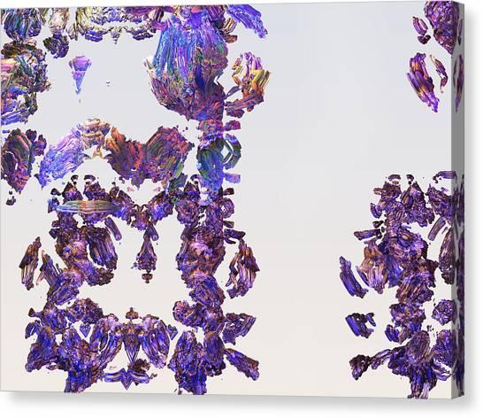 Amazing Delicate Fractal Pattern Canvas Print