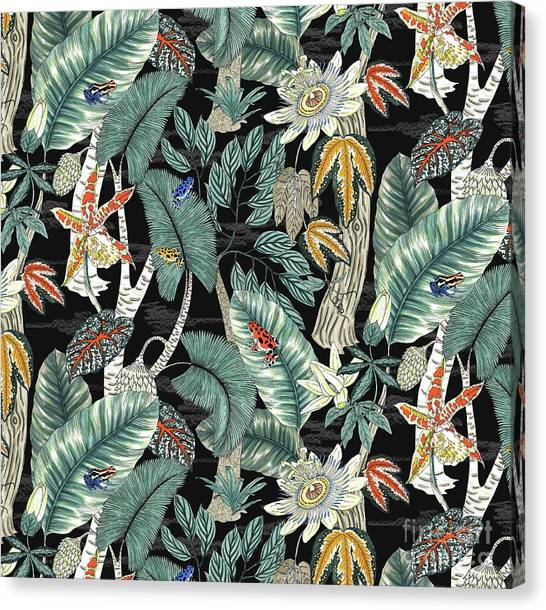 Amazon Rainforest Canvas Print - Amazon by Jacqueline Colley