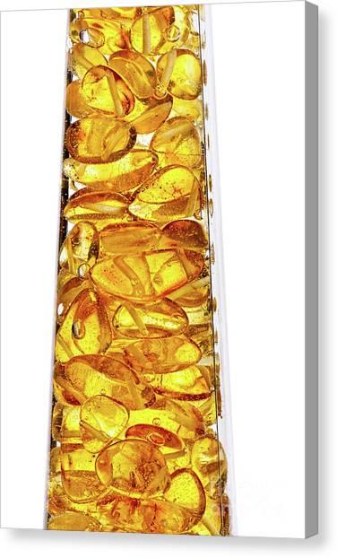 Amber #8527 Canvas Print