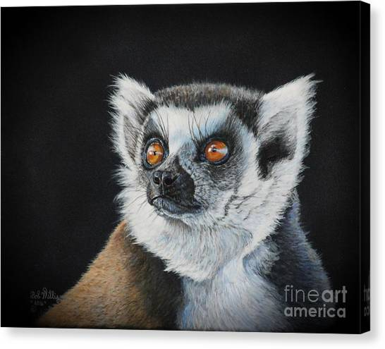 Amber Eyes......lemur Canvas Print