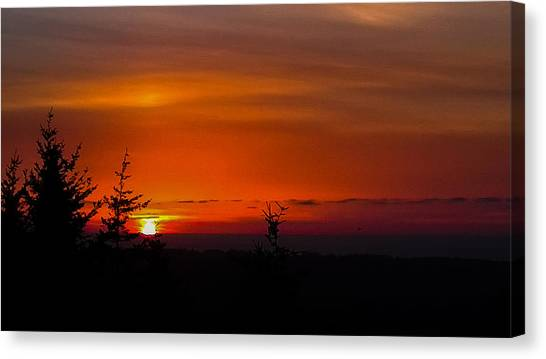 Amber Night Sky Canvas Print