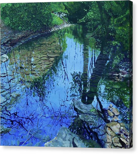Amberly Creek Canvas Print