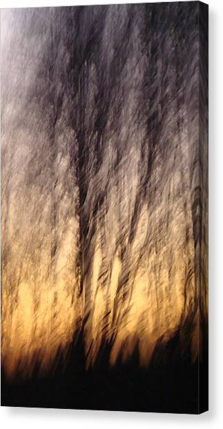 Ambience Canvas Print by Melody Dawn Germain