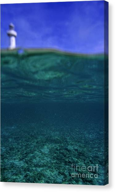 Amedee Lighthouse Island Seen From Underwater Canvas Print by Sami Sarkis