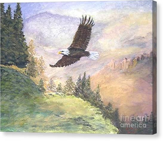 American Bald Eagle Canvas Print by Nicholas Minniti