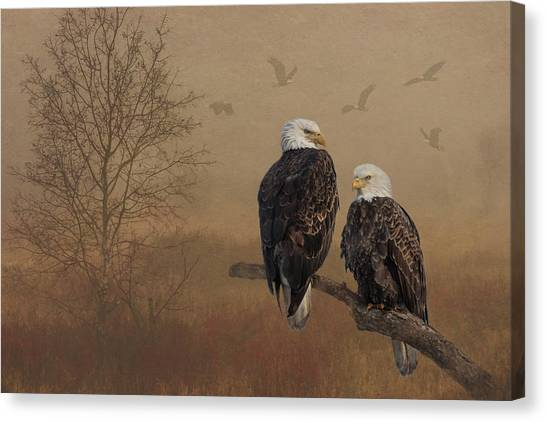 Canvas Print featuring the photograph American Bald Eagle Family by Patti Deters
