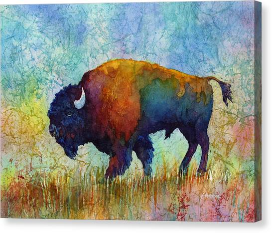 American Buffalo 5 Canvas Print