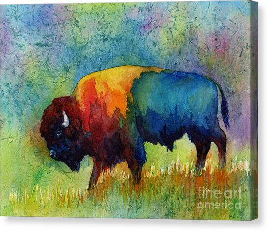 Colorful Canvas Print - American Buffalo IIi by Hailey E Herrera