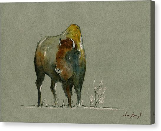 Bison Canvas Print - American Buffalo by Juan  Bosco