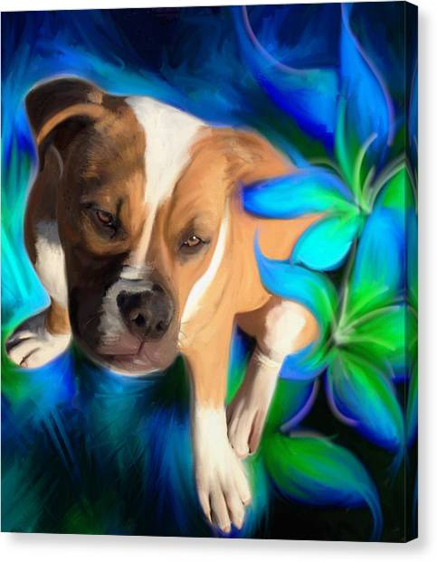 American Bulldog Canvas Print