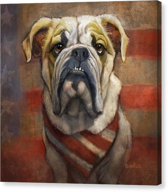 Pugs Canvas Print - American Bulldog by Sean ODaniels
