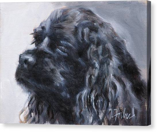 American Cocker Spaniel Canvas Print by Isabel Forbes