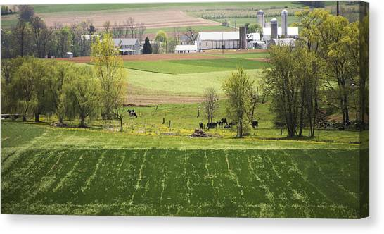 American Farmland Canvas Print