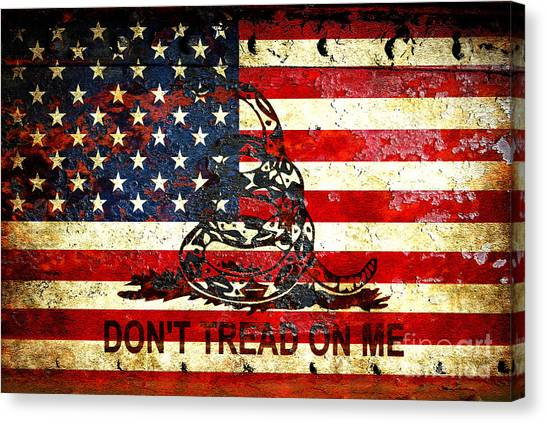 American Flag And Viper On Rusted Metal Door - Don't Tread On Me Canvas Print