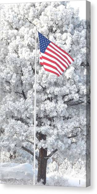 American Flag Snow  Canvas Print