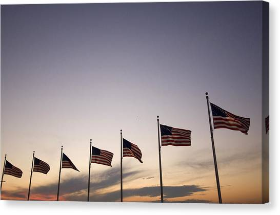 D.c. United Canvas Print - American Flags On The Mall by Joel Sartore
