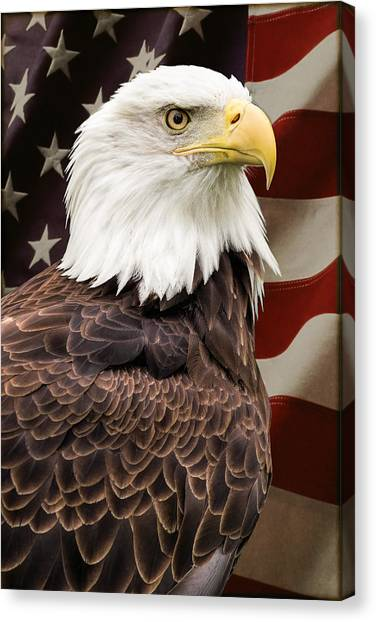 American Freedom Canvas Print