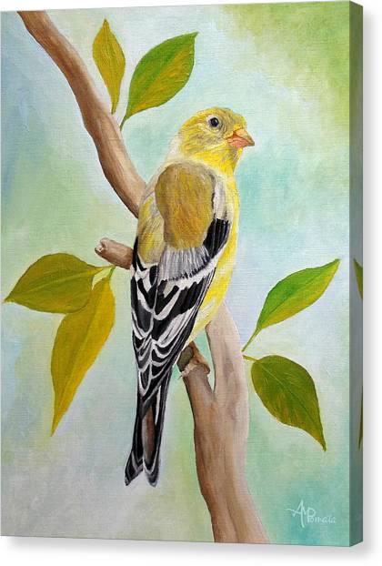 Pretty American Goldfinch Canvas Print