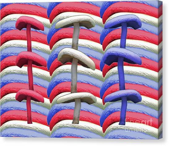 American Mushrooms Canvas Print