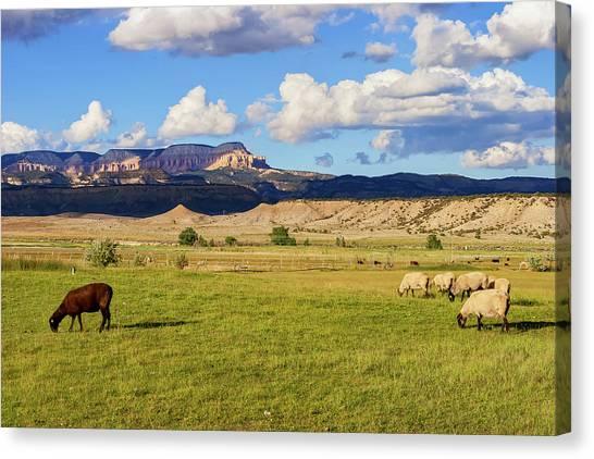 American Pastoral Canvas Print