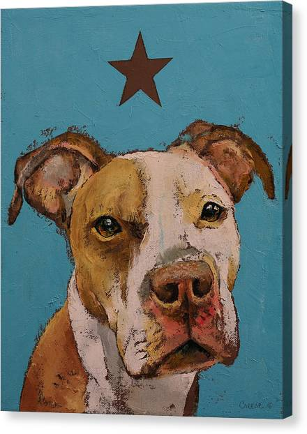Brindle Canvas Print - American Pit Bull by Michael Creese