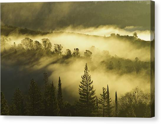 Canvas Print featuring the photograph American River Canyon In The Fog by Sherri Meyer