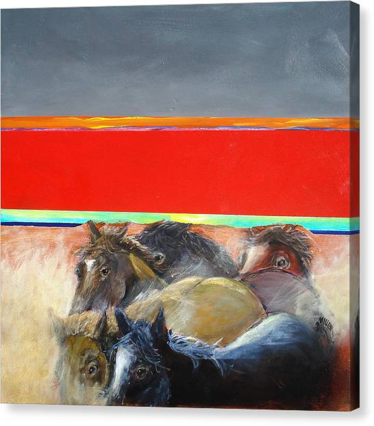 American Wild Horses Herded To Slaughter Canvas Print