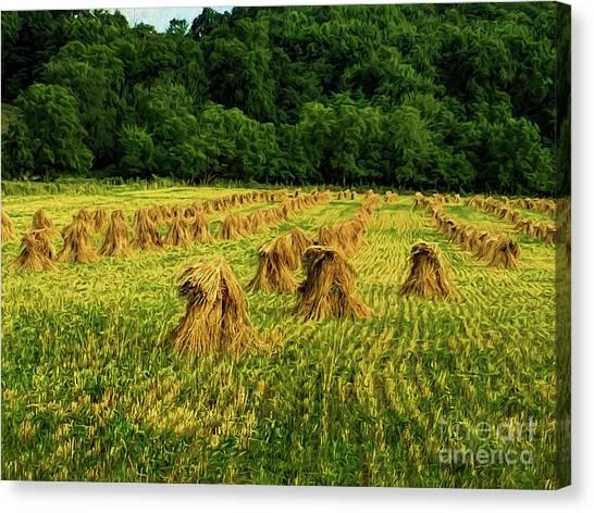 Canvas Print - Amish Hay Field by Elijah Knight