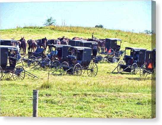 Amish Hillside Canvas Print