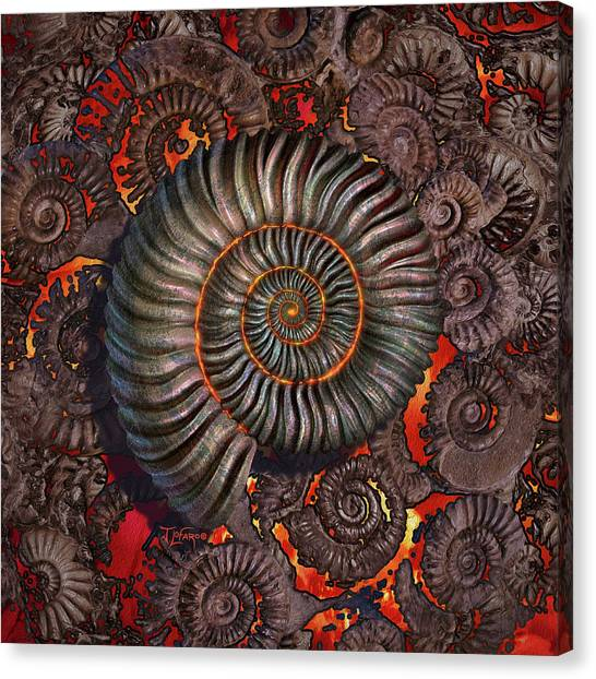 Prehistoric Canvas Print - Ammonite 2 by Jerry LoFaro