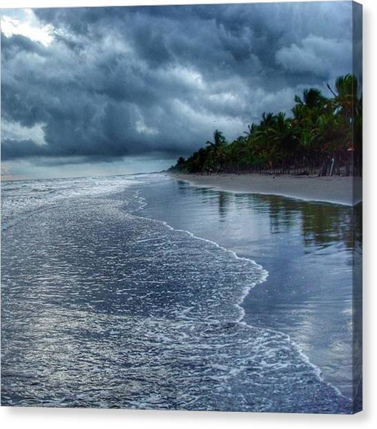 Rainforests Canvas Print - Amo Esta Playa, Las Lajas by Luis Salazar