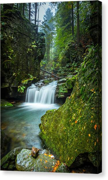 Among The Green Rocks Canvas Print