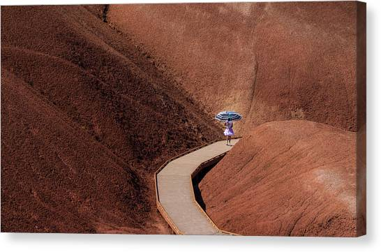 Among The Painted Hills Canvas Print