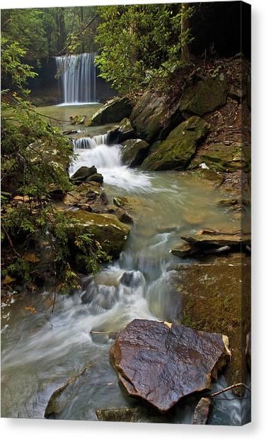 Amos Falls Kentucky Canvas Print