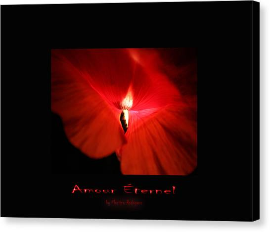 Amour Eternel Canvas Print