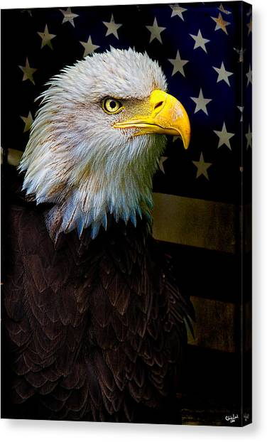 An American Icon Canvas Print