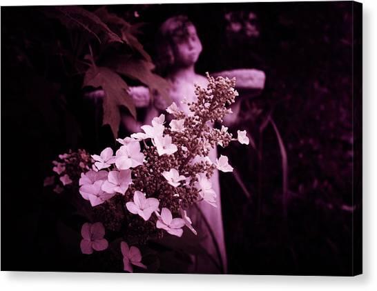 Midnite Canvas Print - Garden Angel  by Toni Hopper