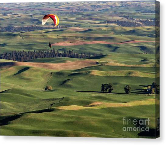 An Evening Flight Agriculture Art By Kaylyn Franks Canvas Print