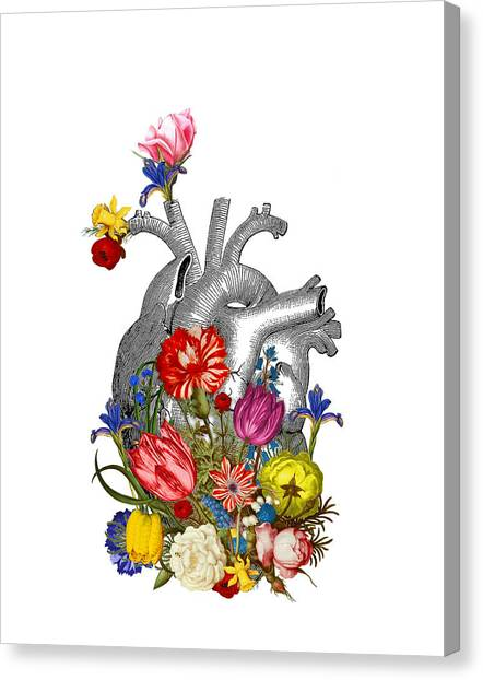 Anatomy Canvas Print - Anatomical Heart With Colorful Flowers by Madame Memento