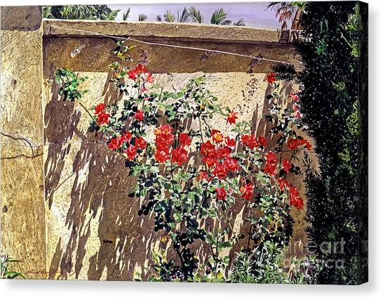 Beverly Hills Canvas Print - Ancient Roses by David Lloyd Glover